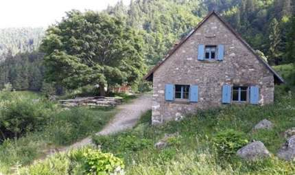La Marcairie du Frankenthal à Stosswihr -  Vallée de Munster