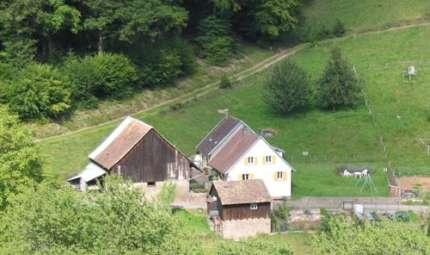 Au Dorsbach