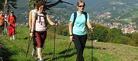 Nordic Walking in the Munster Valley